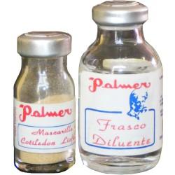 Mascarilla de Cotiledón Placentario